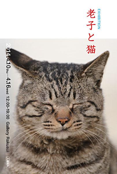 老子と猫展のDMデザイン
